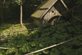 cyclingslovenia_besto of slovenia tour_old mill
