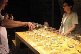 cyclingslovenia_besto of slovenia tour_wine_tasting