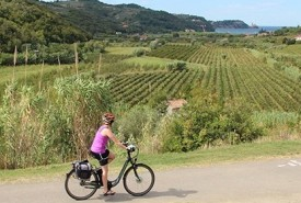 cyclingslovenia_istrian tour_road