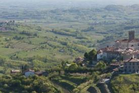 cyclingslovenia_vistas_wines__brda_region1