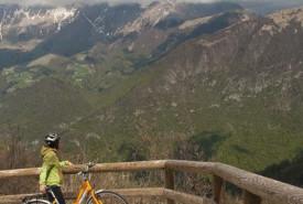 cyclingslovenia_vistas_wines__kolovrat_mt1