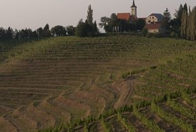 cyclingslovenia_wine and wellness tour_jeruzalem church