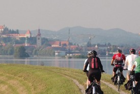 cyclingslovenia_wine and wellness tour_towards ptuj